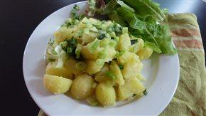 Nové zemiaky na masle s cibuľkou a so šalátom
